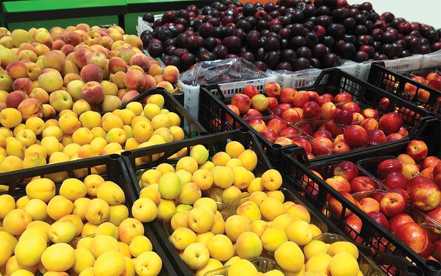 Owoce jabłka śliwki morele
